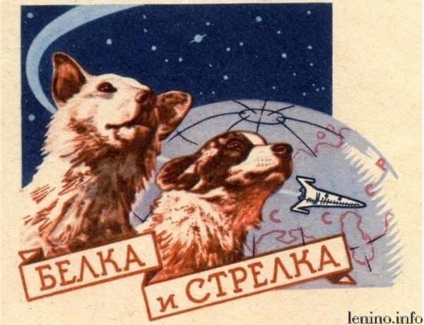 Картинки по запросу 1960 Советский космический корабль с собаками Белкой и Стрелкой на борту совершил суточный полет с возвращением на Землю